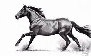 Galloping Horse (pencil) by NillaMustikka on DeviantArt