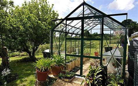 greenhouse guide  incredibly  tips telegraph