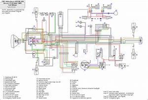 Wiring Diagram For A Yamaha Warrior 350 And