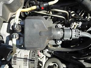 Pompe Injection Lucas 1 9 D : resolu renault megane diesel de 1998 page 2 r paration m canique aide panne auto forum ~ Gottalentnigeria.com Avis de Voitures