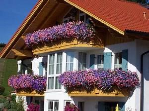 Balkonkästen Bepflanzen Beispiele : was pflanzt ihr in eure balkonk sten haus garten forum ~ Lizthompson.info Haus und Dekorationen