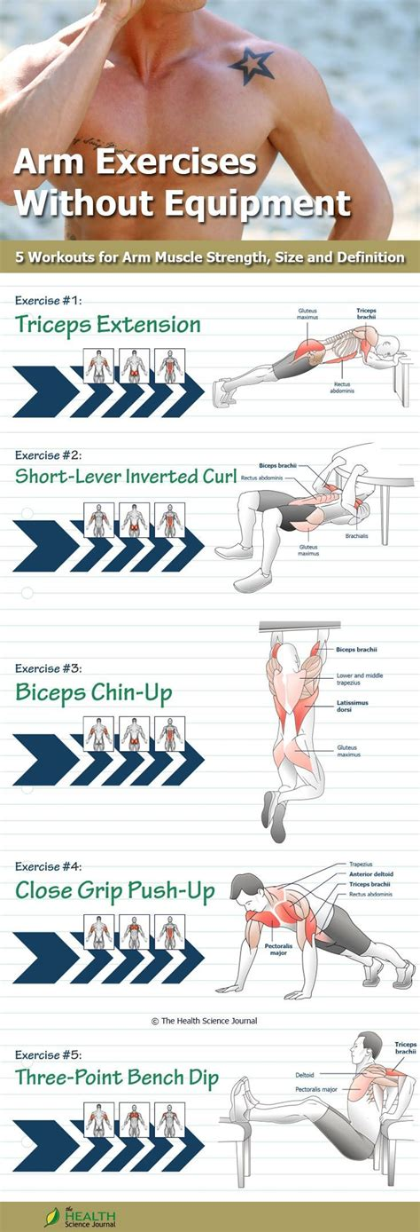 Muscles are generally attached at two points in the body. The 25+ best Muscle names ideas on Pinterest | Gym ...
