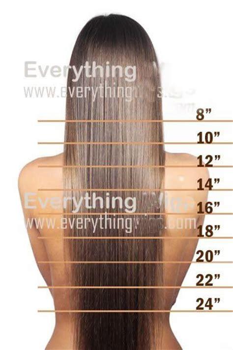 hair extensions    google search hairstyles hair length chart hair