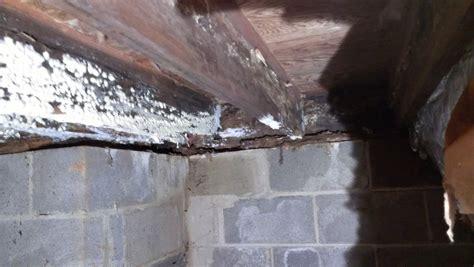 rts enviro mold and asbestos experts in maryland