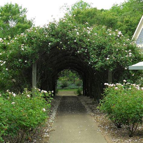 a secret garden create a magical secret garden hgtv
