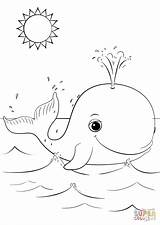 Whale Coloring Pages Cartoon Cute Printable Whales Killer Animals Sheets Drawing Animal Outline Cartoons Printables Bible Easy Supercoloring Under Preschool sketch template