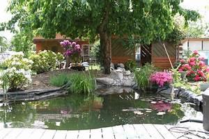 Awesome Mini Bassin Jardin Japonais Pictures Amazing House Design ...