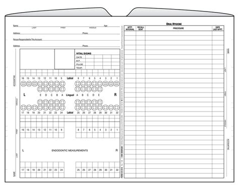 dental charting template the gallery for gt printable dental tooth chart
