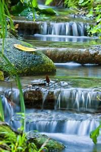 Wasserlauf Selber Bauen : wasserlauf im garten selber bauen und anlegen ~ Michelbontemps.com Haus und Dekorationen