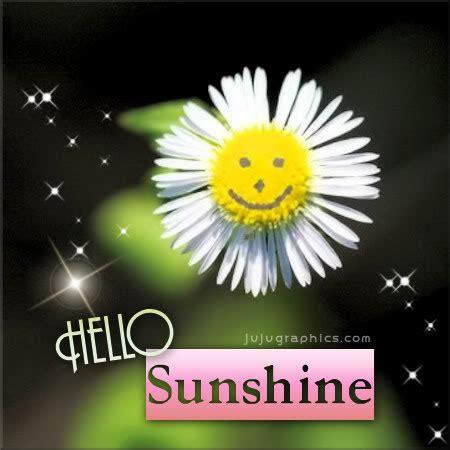 sunshine jujugraphics