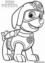 Patrol Paw Coloring Zuma Pages Colouring Rocky Drawing Printable Sheets Pawpatrol Getcolorings Colorings Pdf Kit Popular Fortnite Coloringhome Template Searches sketch template