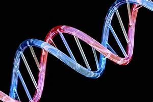 Amazon, Google Race to Get Your DNA Into the Cloud - NBC News