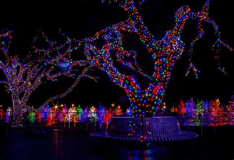 28 best when were tree lights invented who