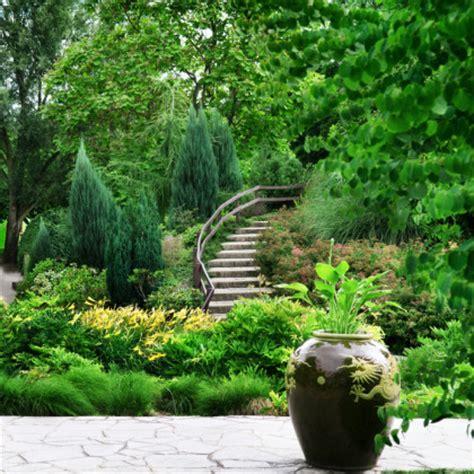 """Gartendesign """"natur Pur"""" Bäume Und Sträucher"""