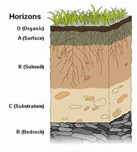 Soil Horizons - Soil Facts - Soil Secret Agents