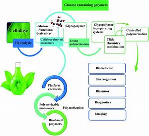 Current Progress In Production Of Biopolymeric Materials Based On Cellulose  Cellulose