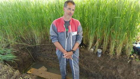 chambre agriculture bourgogne gérer la fertilité des sols en agriculture biologique rfi
