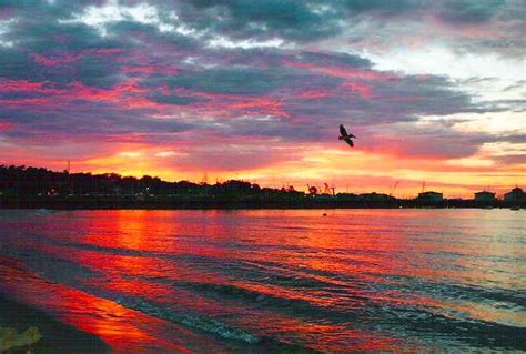 Monterey Ca Monterey Bay Fisherman Wharf Sunset Photo