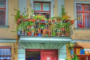 Mittel Gegen Schnecken : schnecken auf dem balkon woher was tun tipps tricks ~ One.caynefoto.club Haus und Dekorationen