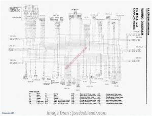 Yamaha  Sporty Electrical Wiring Diagram Most Wiring Diagram Xs400 Top