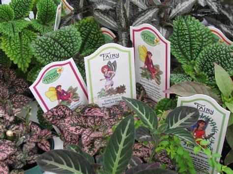 sturtz  copeland fairy gardens delight  ages