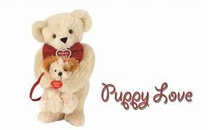 Best 25+ Teddy ... Cute Bear Quotes