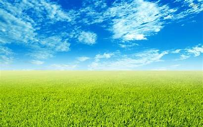 Field Wallpapers Background Grass 1080p Nature Resolution