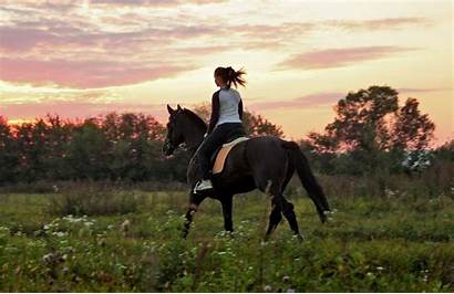 Horse Riding Sunset Wallpapers Horses Rider Medieval