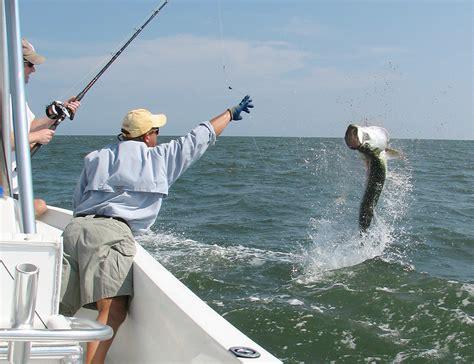 tarpon fish fishing florida calendar catch jump fl pass game times grande bass difficult finding during practically pound battled boco