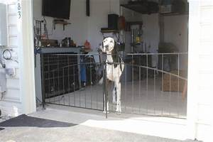 Interior pet gates as a specialty fence you39ll find useful for Dog fence for inside house