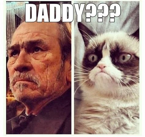 Grumpy Old Lady Meme - 175 best images about grumpy cat exclusive original material on pinterest gift quotes cats