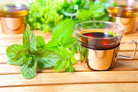 Buy Lemon Balm Tea Benefits Preparation Side Effects
