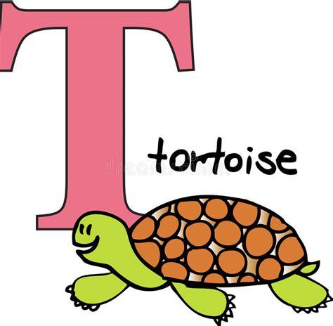 animal alphabet  tortoise stock vector illustration