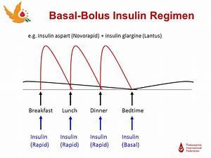 Basal Insulin Berechnen : diabetes and thalassaemia ppt video online download ~ Themetempest.com Abrechnung