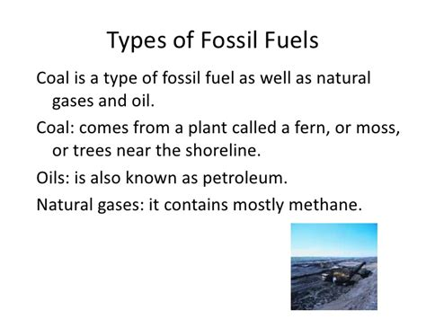 Fossil Fuels Final