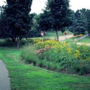 prairie gardens chaign lake nokomis gardens savanna designs