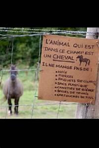 Que Donner A Manger A Un Ecureuil Sauvage : panneau interdiction de nourrir les chevaux 1 forum cheval ~ Dallasstarsshop.com Idées de Décoration