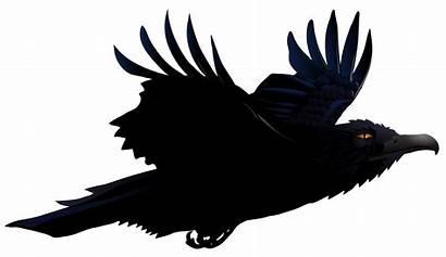 Raven Clipart Clip Halloween Transparent Vector Cliparts