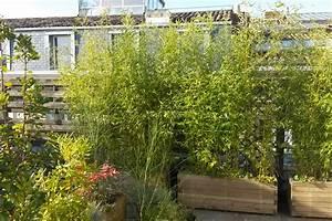 Bac A Fleur Balcon : paysagiste bordeaux am nagement de jardins terrasses balcons herbes fauves fleuriste ~ Teatrodelosmanantiales.com Idées de Décoration