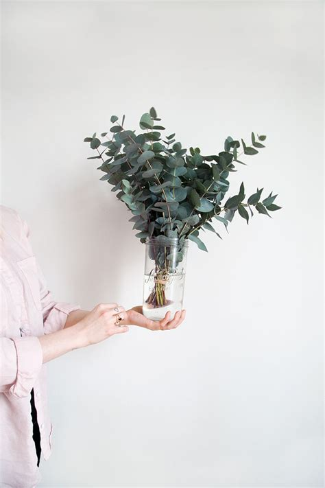 chambre froide mobile les 25 meilleures idées concernant fleurs séchées sur