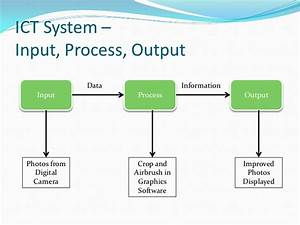 Input Process Output Gallery