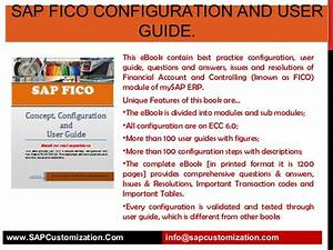 Org Structure In Sap Fico