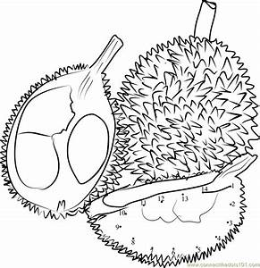 Durian clipart black and white - Pencil and in color ...