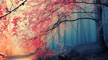Artistic Nature Autumn Fall Landscapes Paintings Wallpapers