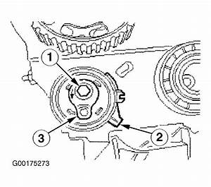 2000 Ford Focus Serpentine Belt Routing And Timing Belt