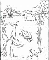 Coloring Water Pages Park Conservation Books Pollution Getcolorings Printable Drinking Getdrawings Drawing sketch template