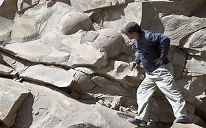 Giant Dino Eggs Found? Bad Reporting on Bad Science ...