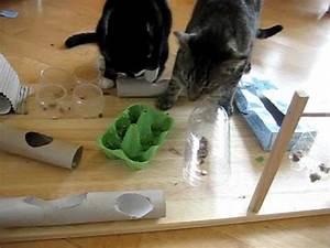 Malzpaste Für Katzen : fummelbrett f r katzen selbstgebastelt youtube ~ Orissabook.com Haus und Dekorationen