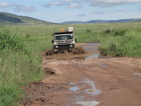drive safari tanzania  tanzania safari