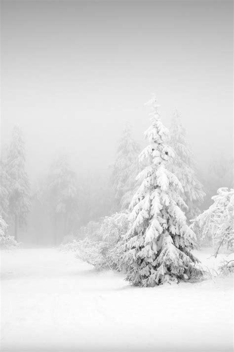 Quand Le Minimalisme Et L'hiver Fusionnent, Cela Donne 25